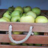 Fruta ecológica local